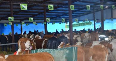 Poljoprivredni sajam u Kruševcu najznačajniji agrobiznis događaj centralne Srbije